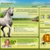 Online hra s koňmi – Howrse