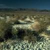 Poznejte nejteplejší místo na Zemi – Údolí smrti