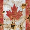 Navštivte kanadský skvost – Calgary