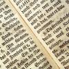 Texty na míru – články na míru