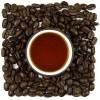 Druhy kávy a největší producenti